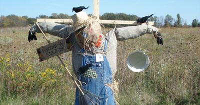 Build a Scarecrow