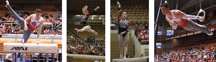 Enjoy a Weekend Full of Ohio State Gymnastics with Your Women's & Men's Teams!