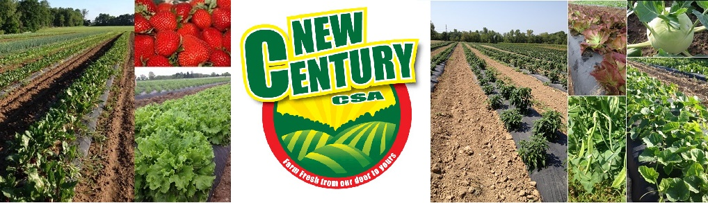 Become a Member of the New Century CSA Community!