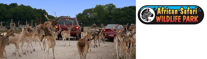 Bring the Family to African Safari Wildlife Park, a Drive-Thru Zoo Park!