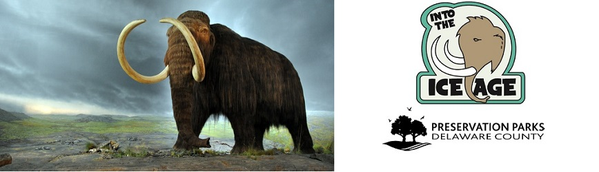 """Discover the World of Woolly Mammoths at Preservation Parks of Delaware County """"Into the Ice Age""""!"""