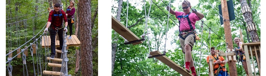 Treetop Adventure at Levi Jackson, Your Brand New Treetop Aerial Attraction!