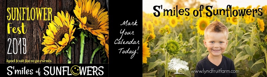 Bring the Family Out to Lynd's 10 Acre S'Miles of Sunflowers!