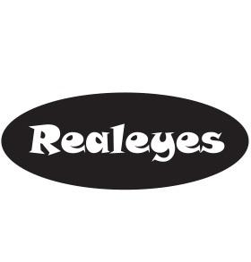 Ohio Optometric Association - Realeyes Program Logo
